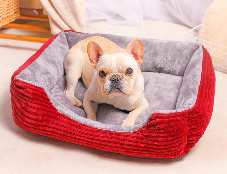 狗窝适合摆放在家中哪个位置