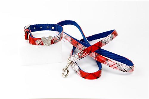 Desny PU Dog Leash